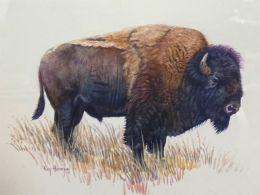 Alone Buffalo