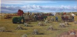 Alberta Harvest
